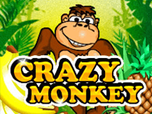 Платный автомат Crazy Monkey