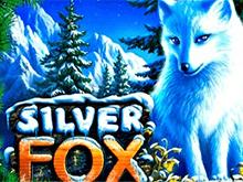 Silver Fox играть в Вулкане удачи