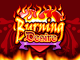 Burning Desire – онлайн аппарат с множеством бонусов